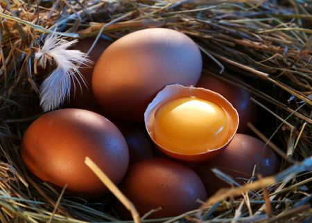 Chicken eggs in the straw with half a broken egg in the morning light. photo