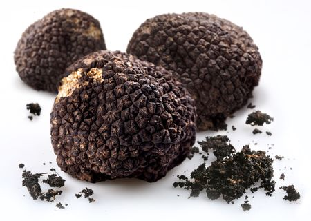 Black truffles with the pieces of soil on a white background photo