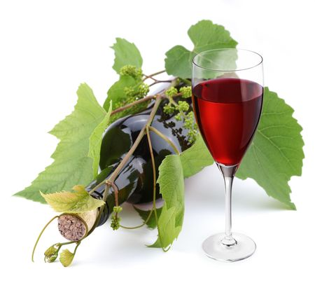 Bottle of wine in the vine on a white background photo