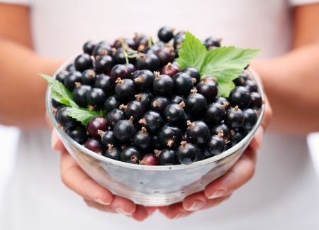 black currant: Crockery with black currant in woman hands.