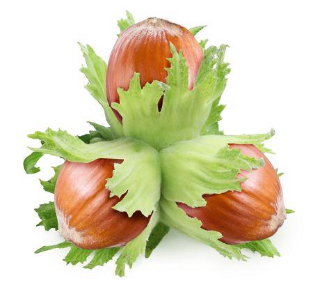 filbert: Unseasoned filbert nuts over white Stock Photo