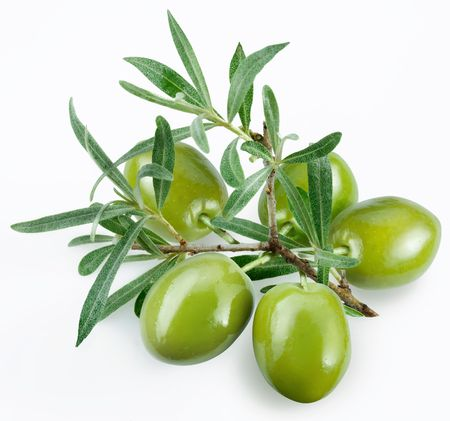 olive green: green olives with a branch on a white background