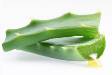 Pieces of aloe vera. Isolated on a white background. photo