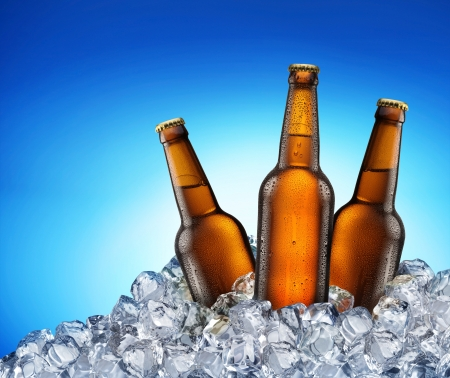 Three beer bottles getting cool in ice cubes. Isolated on a blue. File contains a path to cut Stockfoto