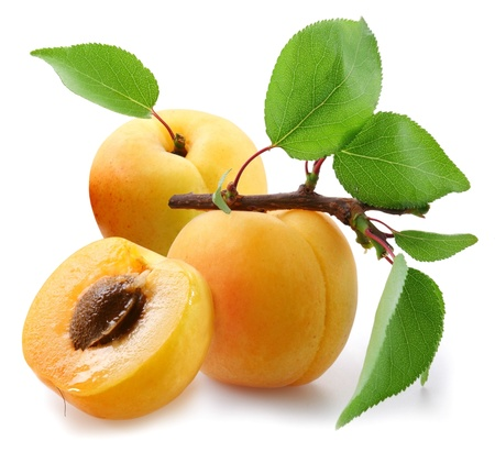 Apricots with leaves on a white background.