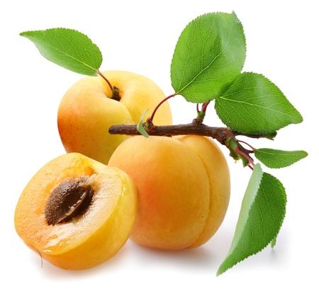 Aprikosen mit Leaves on a white Background.