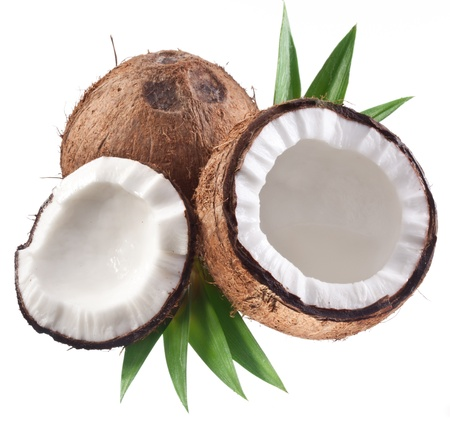 High-quality photos of coconuts on a white background.
