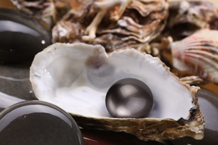 huitre: Image of a black pearl in the shell on wet pebbles.