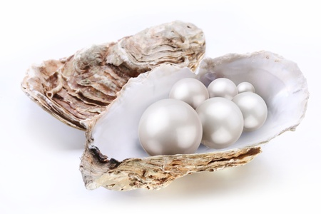 oyster: Image placer pearls in a shell on a white background. Stock Photo