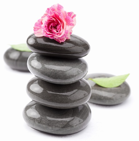 equipoise: Spa stones with rose and leaves on a white background. Stock Photo