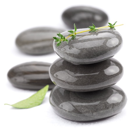 Spa stones with green leaves on a white background. Stock Photo - 8658803