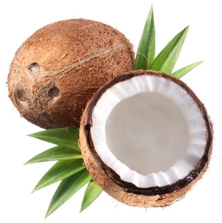 Foto di alta qualità di noci di cocco su uno sfondo bianco.