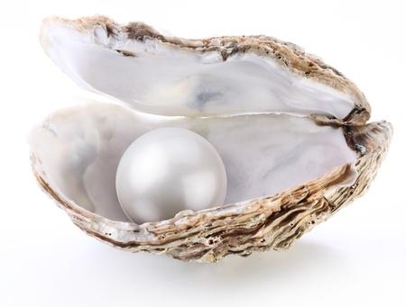 Image d'une perle blanche dans une coquille sur un fond blanc.