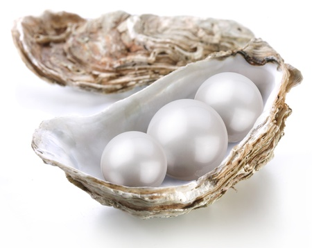 pearl shell: Image placer pearls in a shell on a white background. Stock Photo