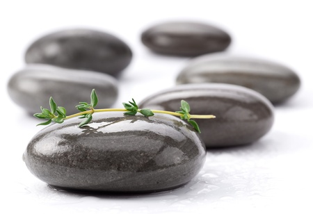 equipoise: Spa stones with green leaves on a white background.