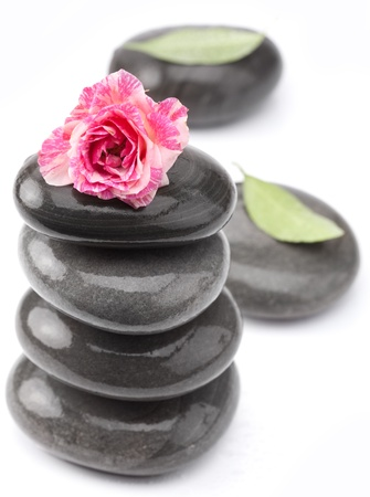 equipoise: Spa stones with rose flower on a white background. Stock Photo