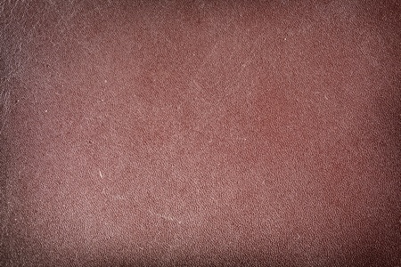 Image texture of brown skin. Stock Photo - 8720288