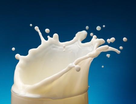 verre de lait: Splash de lait de verre sur un fond bleu Banque d'images