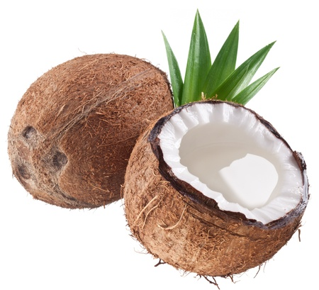 coconut milk: High-quality photos of coconuts on a white background.