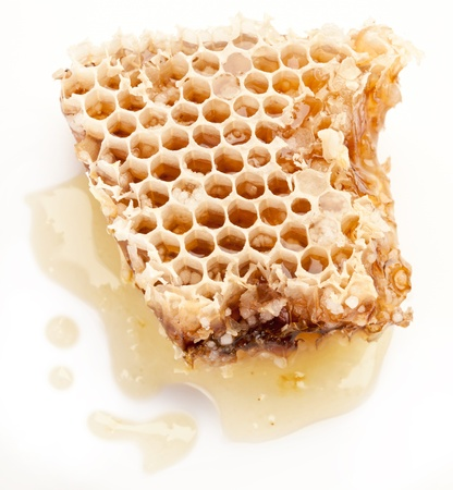 honey cell: Close up view of honeycombs.