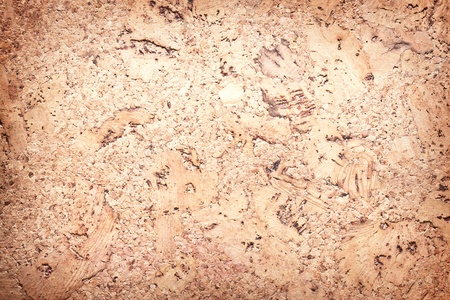 Image texture cork - wood surface. photo