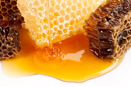 Close up view of honeycombs.