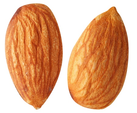 Two almonds isolated on a white background. File contains a path to cut. photo