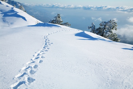 Footprints in the snow, reaching to the horizon above the clouds. photo