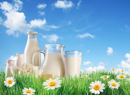 leche y derivados: Leche y productos lácteos en el pasto con manzanilla. Sobre un fondo del cielo de verano con las nubes. Foto de archivo