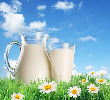 milk fresh: Milk jug and glass on the grass with chamomiles. On a background of the summer sky with clouds.