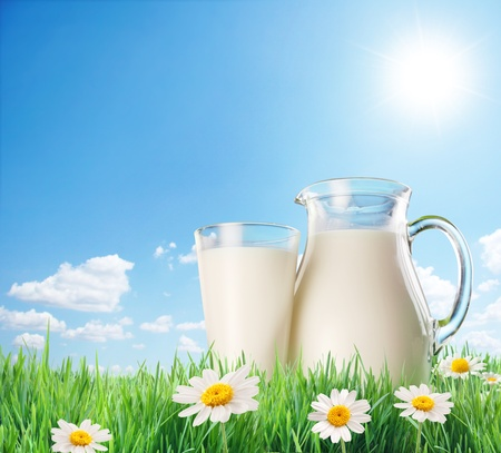milk glass: Milk jug and glass on the grass with chamomiles. On a background of the sunny sky with clouds.
