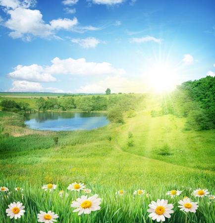 Paisaje de verano con un lago. En primer plano - la manzanilla. Cielo con sol brillante y las nubes. Foto de archivo