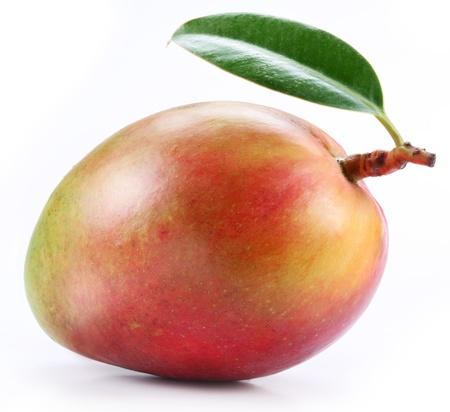 mango: Mango z liściem na białym tle.