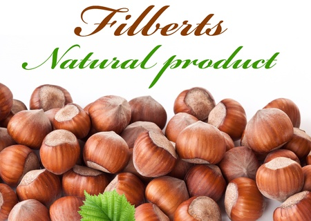 Nuts filberts isolated on white background. Space for text at the top. photo