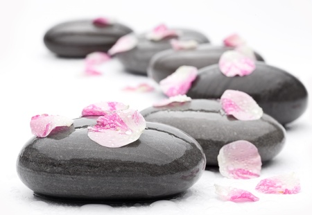 equipoise: Spa stones with rose petals on white background.