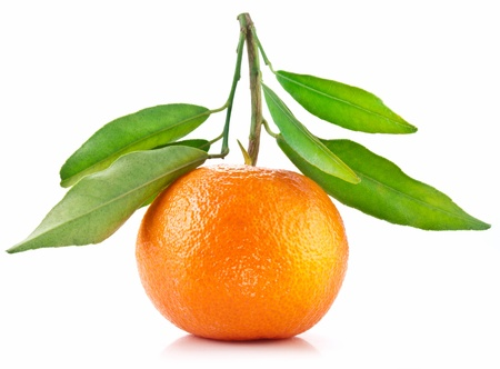 Tangerine with leaves on white background. photo