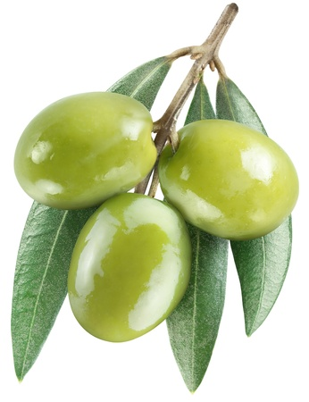 Olives with leaves on a white background   File contains the path to cut  photo