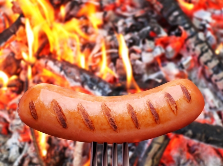 Sausage on a fork  In the background in bonfire  photo