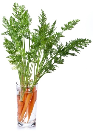 potherb: Carrots with leaves standing in a glass of water. Iimage on white background.