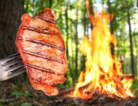 Steak on a fork. In the background a bonfire in the forest. photo
