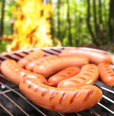 Sausages on a grill. In the background a bonfire in the forest. photo