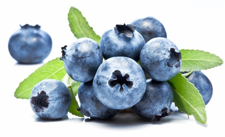 Blueberries with leaves on white background  photo