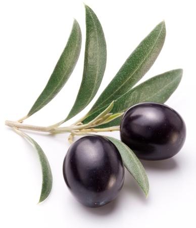 hoja de olivo: Aceitunas negras maduras con hojas sobre un fondo blanco