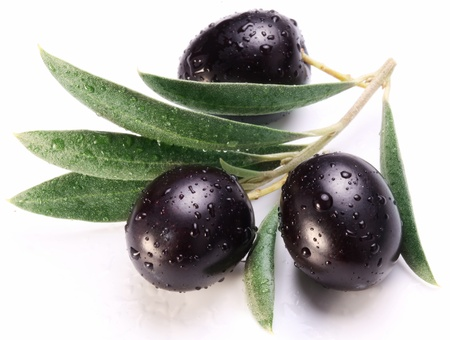Ripe black olives with leaves on a white background. photo