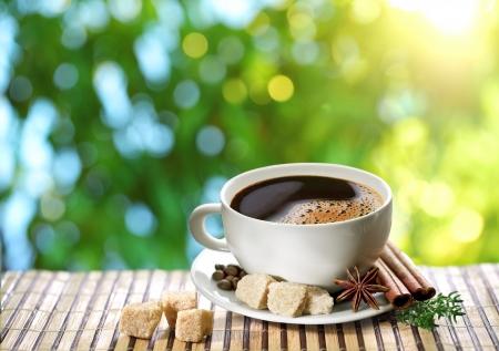 planta de cafe: Taza de caf� sobre un fondo borroso de la naturaleza Foto de archivo