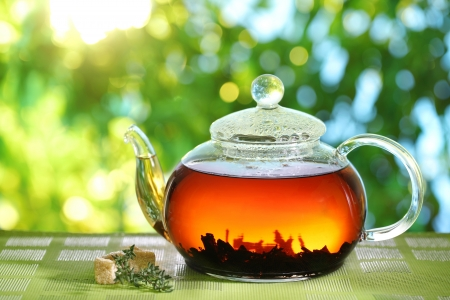 brown cup tea: Teapot on a blurred background of nature