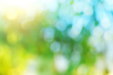 de focus: Background blur of nature in spring  Stock Photo