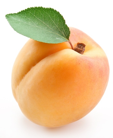 apricot: Apricot with leaf on a white background.