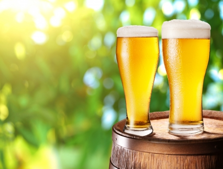 beer: Two glasses of beer on a wooden barrel. Background - blurred sunny forest.