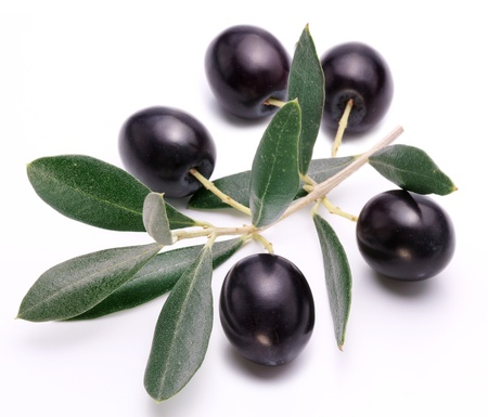 Ripe black olives with leaves on a white background  Stock Photo - 18398674